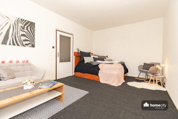Ložnice s obývacím pokojem